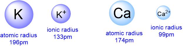 atomic vs ionic radius cation