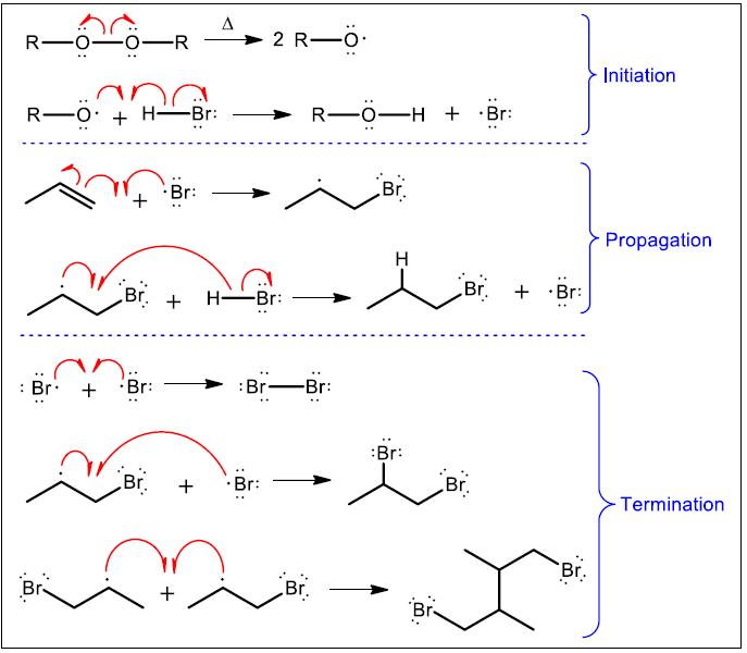 HBr ROOR mechanism