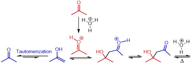 acid-catalyzed aldol mechanism