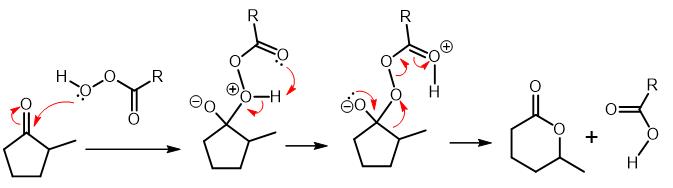 baeyer villiger oxidation 02