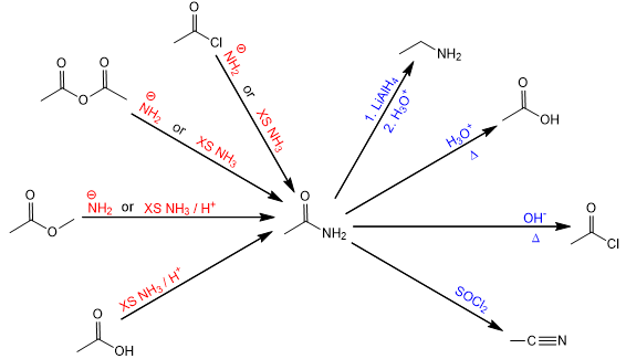 synthesis and reactions of amides