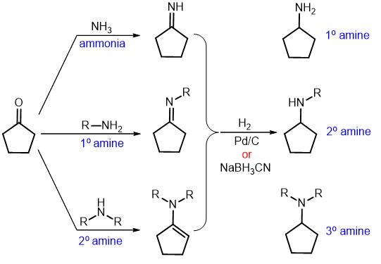 reductive amination 02